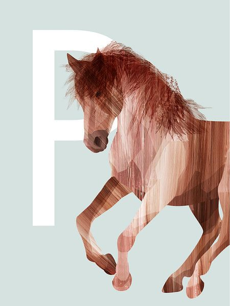 P - Paard van Goed Blauw