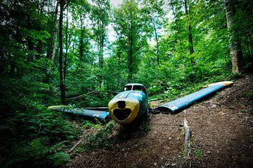 Blauw vliegtuig van Peter Deschepper