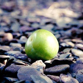 Apple I van Bram van Kattenbroek