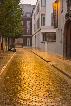 Gouden Kasseien in Leuven II van Manuel Declerck