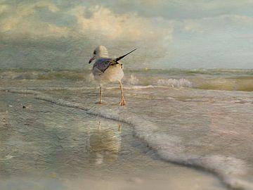 Een wandeling langs het strand. van Yolanda Bruggeman
