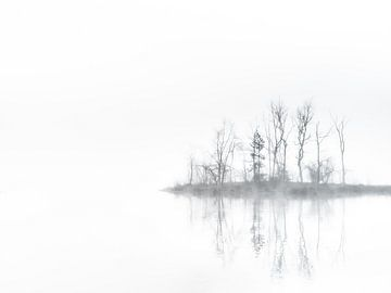 Nebelige Reflexion von Lex Schulte