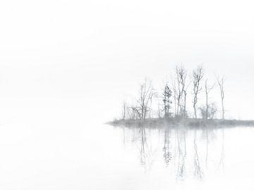 Misty mirror van Lex Schulte
