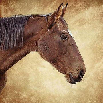 Portrait d'un cheval brun sur fond brun (art) sur Art by Jeronimo