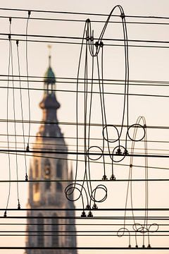 Breda On a Wire