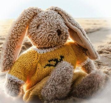 Spielzeug Kaninchen am Meer von Mieneke Andeweg-van Rijn