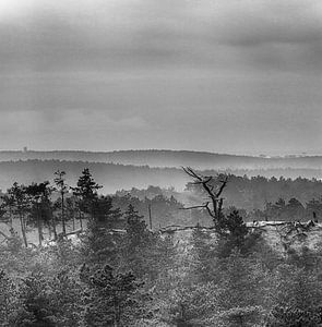 Die Dünen im Nebel von jeroen akkerman