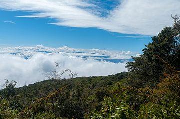 Costa Rica: Irazú Vulkaan von Maarten Verhees
