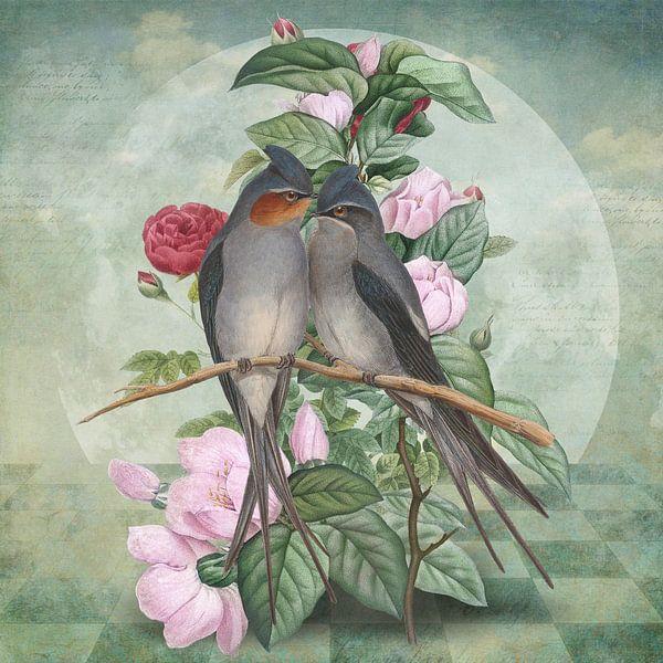 LoveBirds sur Marja van den Hurk