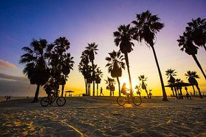 Venice Beach van Michel van Rossum