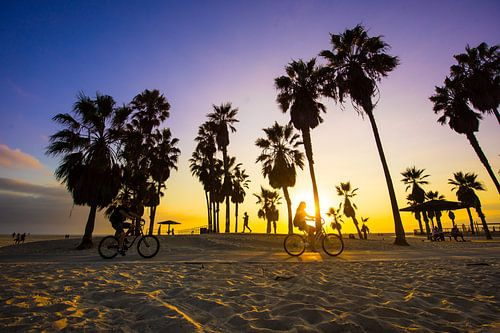 Venice Beach van