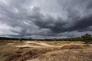 Dreigende wolkeluchten boven landgoed Heidestein