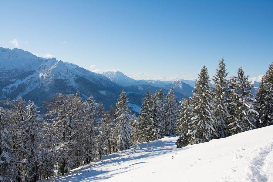 Sneeuwlandschap van Marjolijn Barten