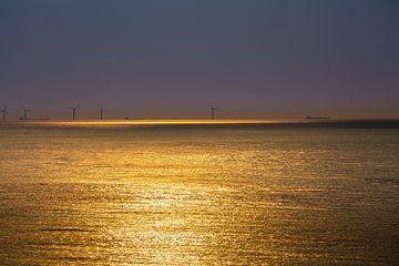 Windmolens bij zonsondergang 8 van