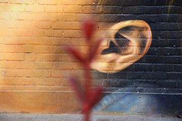 focus op gezicht op de muur von Gerrit Neuteboom