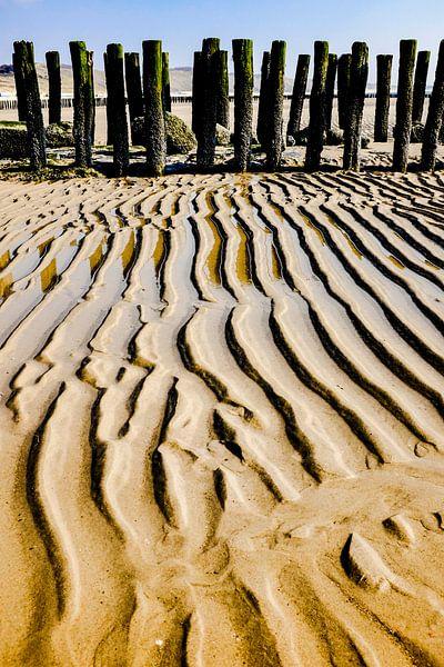 golvend zand van jan van de ven