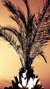 Palmboom van Chantal Koper