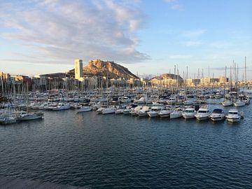 Port Alicante van Lynn Van Ballaer