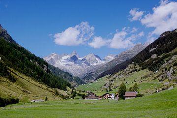 Paysage alpin sur Jürgen Wiesler