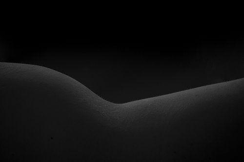 Vrouwelijke vorm zwart-wit
