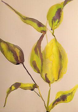 Kalk-a-licious von Helia Tayebi Art