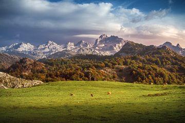 Asturies Picos de Europa sur Jean Claude Castor