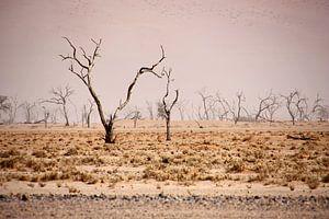 NAMIBIA ... pastel tones III