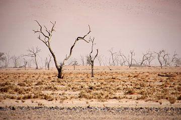 NAMIBIA ... pastel tones III van Meleah Fotografie
