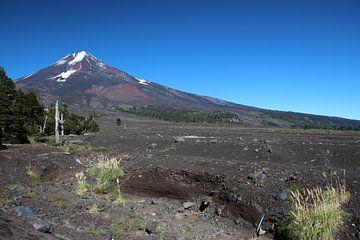 Nationaal Park Conguillío en Volcán Llaima, Chili van A. Hendriks