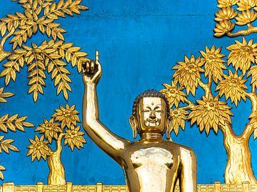 Nepal - Pokhara - Lebenslektion einer goldenen Buddha-Statue von Rik Pijnenburg