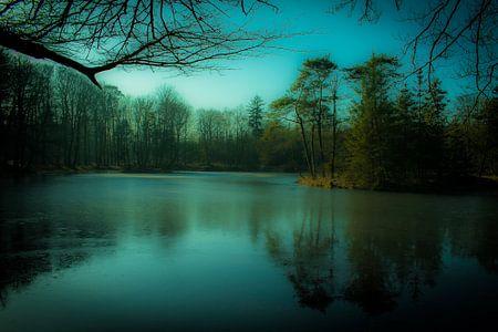 Het mystieke bevroren meer van Tom Holmes