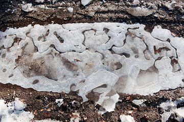 Bevroren karrenspoor in bos van Remke Spijkers