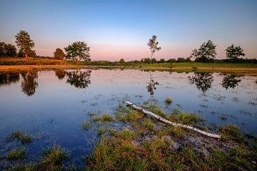 Teich bei Sonnenuntergang von Johan Vanbockryck