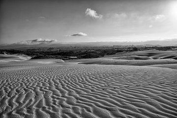 woestijn amerika van Jan Pel