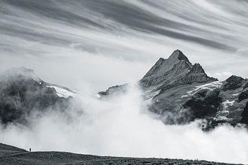 Berner Oberland van