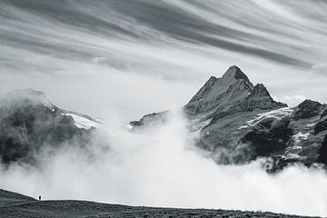 Berner Oberland van Menno Boermans