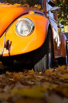 Oranje auto in de herfst van Tess Groote
