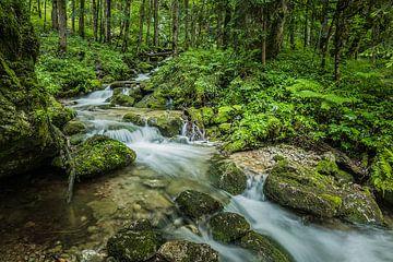 Röthbach waterval in het bos, Duitsland van Bob Slagter