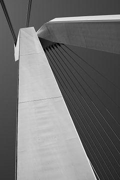 Erasmusbrug, Rotterdam van Piotr Aleksander Nowak
