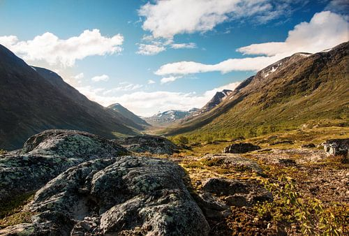 Grote rotsblokken in het dal van