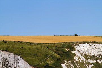 Veld boven de White Cliffs of Dover