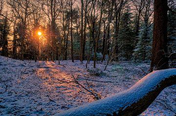 winter in Holland. von Robin Pics (verliefd op Utrecht)
