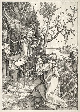 Marialeven: Joachim en de engel, Albrecht Dürer van De Canon