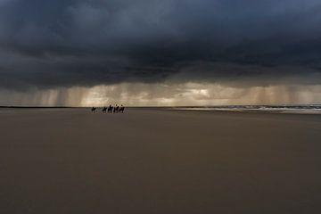 Horses van Gerrit de Groot