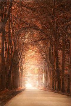 Majestic road von Elly Besselink
