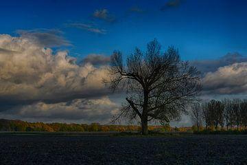 Herbst in Wieler (Limburg) von FotoGraaG Hanneke