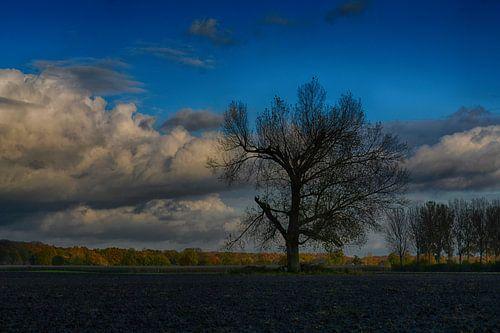 Herfst in Wieler (Limburg)