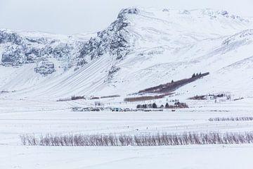 Dorpje in de winter in IJsland