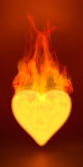 Burning Heart van Jörg Hausmann
