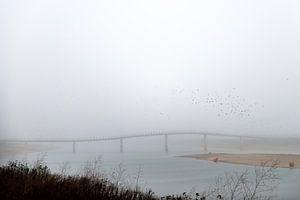 Zaligebrug in de mist van